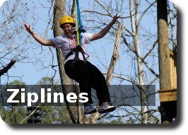 Ziplines Photo Gallery
