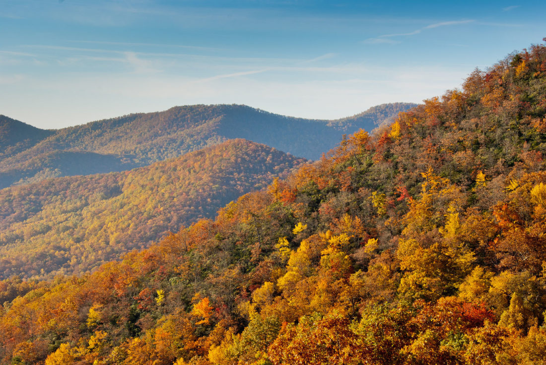 Fall Colors in the Smokies